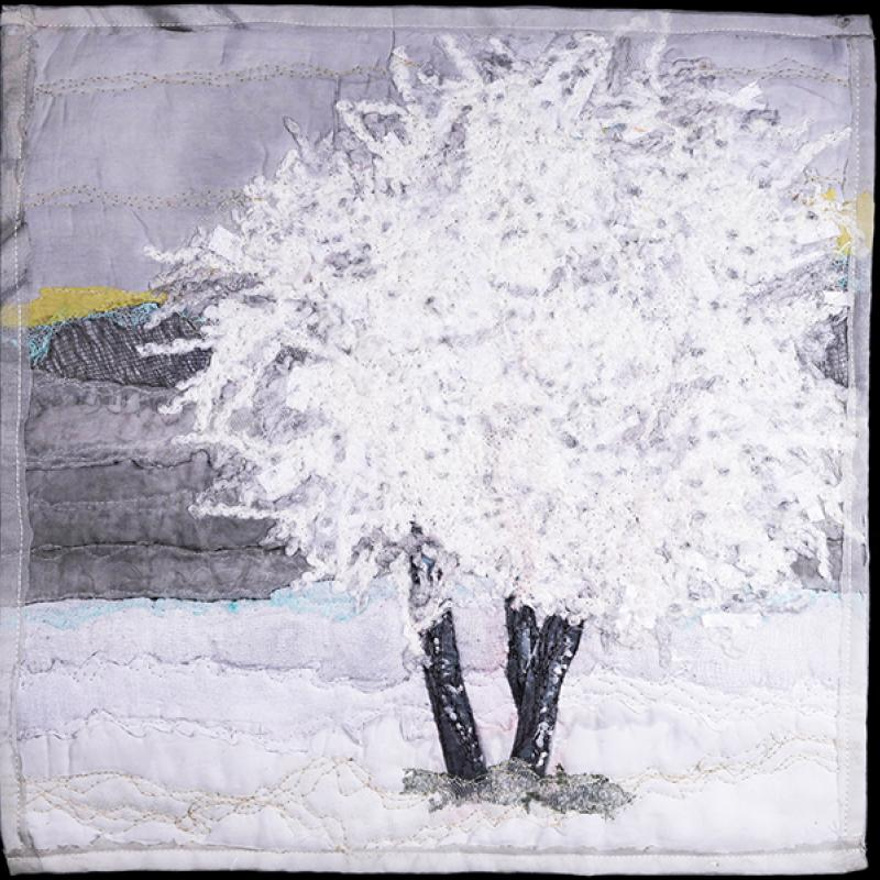 Susan Selby - Hoarfrost