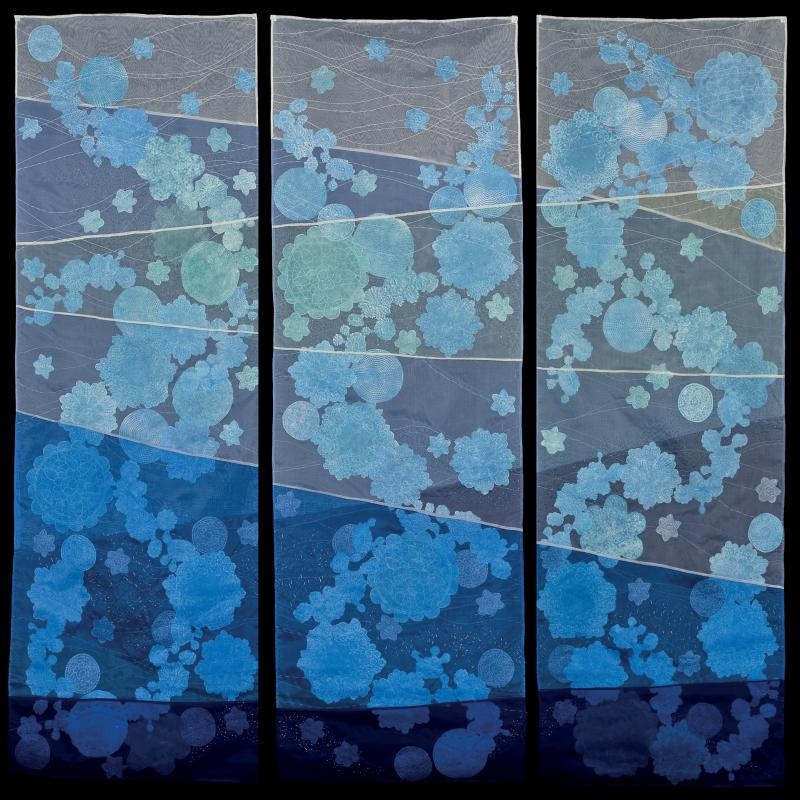 Nancy Crasco - Diatoms