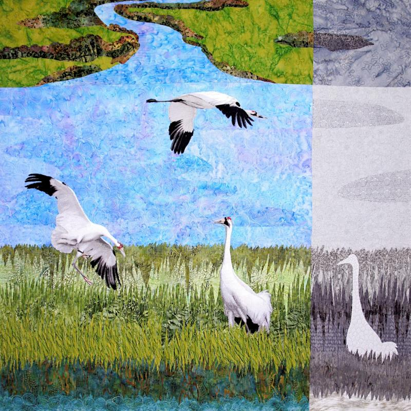 Sara Sharp - Can We Save the Whooping Cranes?