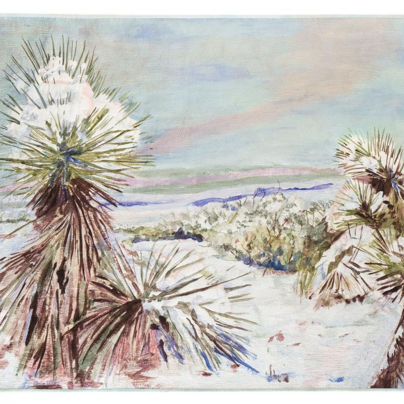 Carolyn  Villars - Snow in the Desert
