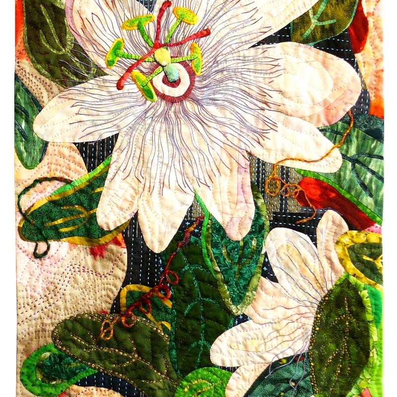 Hsin-Chen  Lin - Passion Flower