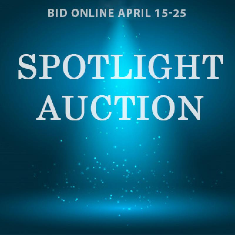 Spotlight Auction